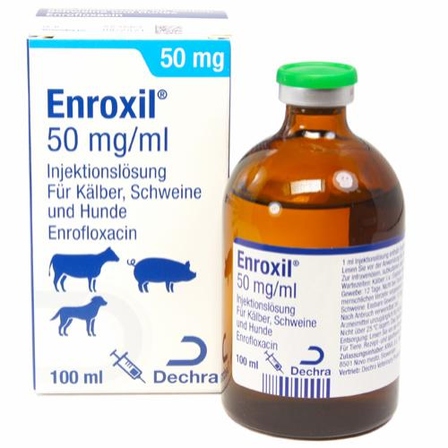 Enroxil 50 mg/ml